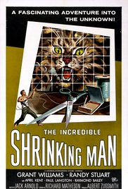Watch Free The Incredible Shrinking Man (1957)