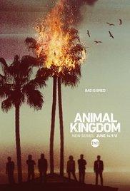 Watch Free Animal Kingdom