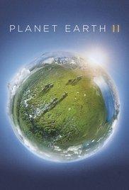 Watch Free Planet Earth II