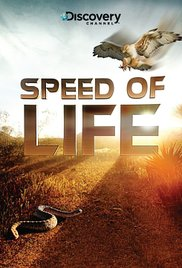 Watch Free Speed of Life (2010)