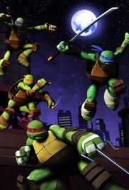 Watch Free Teenage Mutant Ninja Turtles (TV Series 2003 - 2010)