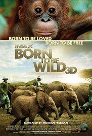 Watch Free Born to Be Wild (2011)