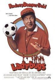 Watch Free Ladybugs (1992)
