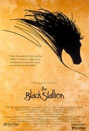 Watch Free The Black Stallion (1979)