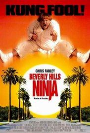 Watch Free Beverly Hills Ninja (1997)