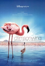 Watch Free The Crimson Wing: Mystery of the Flamingos (2008