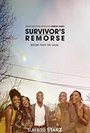 Watch Free Survivors Remorse (2014)